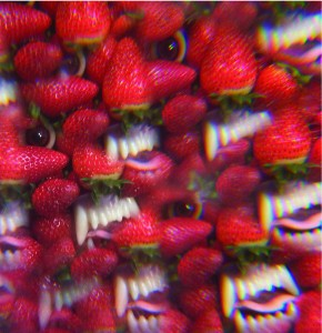 Thee Oh Sees : Punk's still alive?