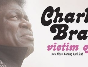 Charles Bradley : le come-back del'amour