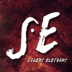 Rencontre avec Silent Elephant: Live Report Le Biplan, Lille(16/06/2016)